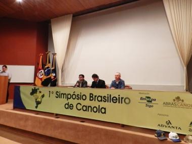 Motivos para o crescimento da canola no Brasil